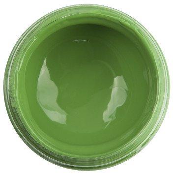 Acrylic Paint Leaf Green